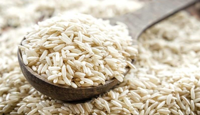 کرم ساقه خوار یکی از انواع آفت برنج