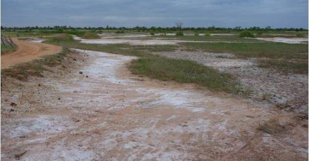 علت شوری خاک